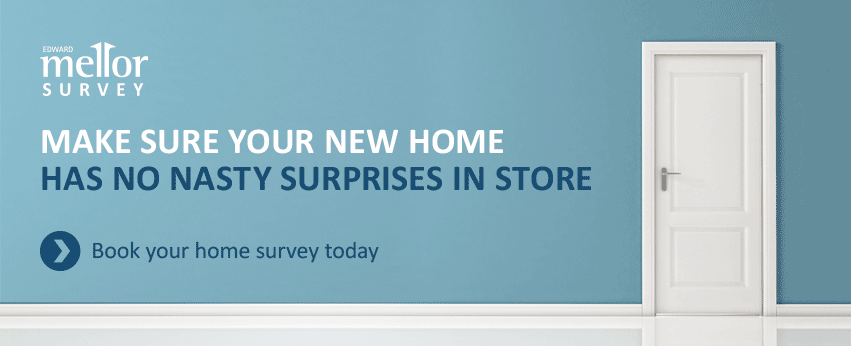 Make sure your home has no nasty surprises!