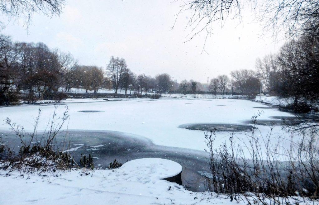 Alexandra Park Frozen Reservoir