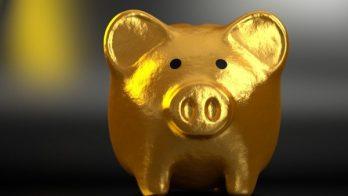 Golden Pig Savings Equity Release